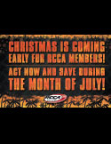 Lionel Racing - RCCA Catalog: June/July 2013 Tip-In